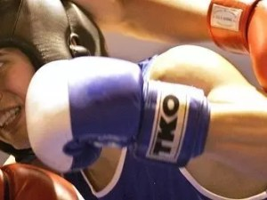 boxers feature