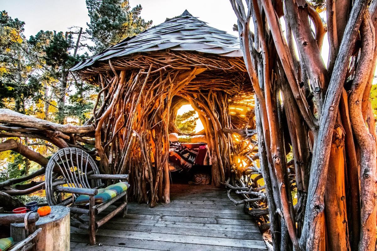 Campsite With Human Nest Or The Twig Hut Treebones Resort
