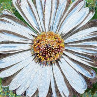 Glass Tiles from SICIS - Flower Power collection