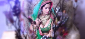 Poonam Pandey all set for 100 Cr. Club