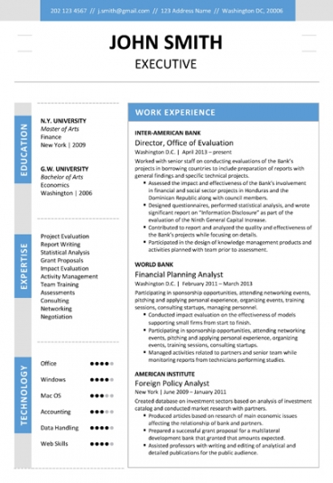sales executive cv template