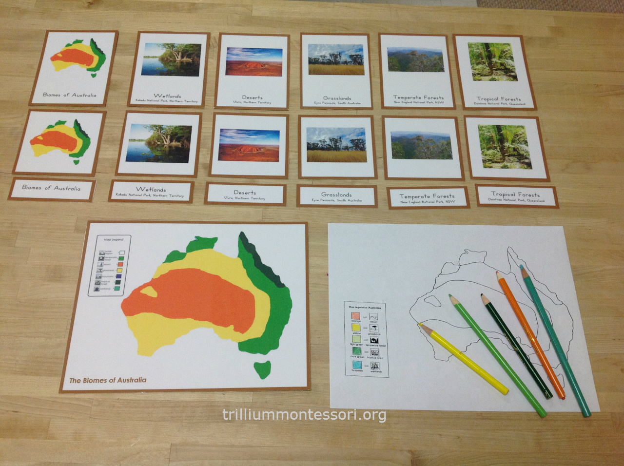 Learning About Australia Trillium Montessori