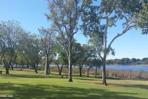 celebrety-tree-park