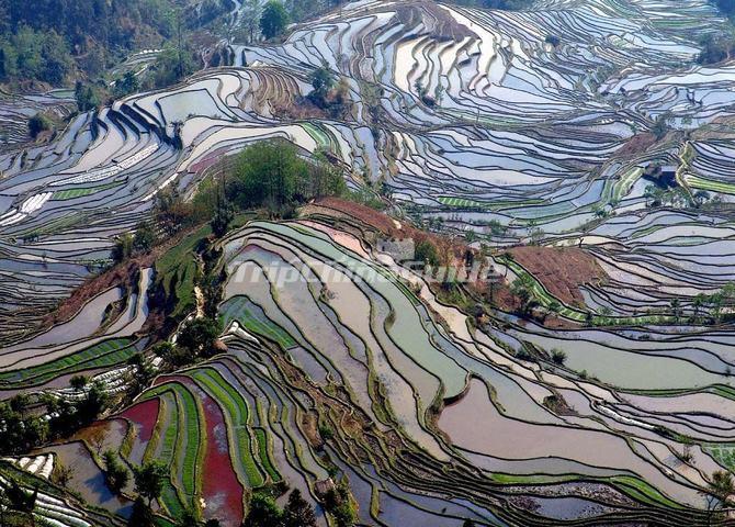 Beautiful Fall Paintings Wallpapers Breathtaking Yuanyang Hani Terraced Rice Fields In Yunnan