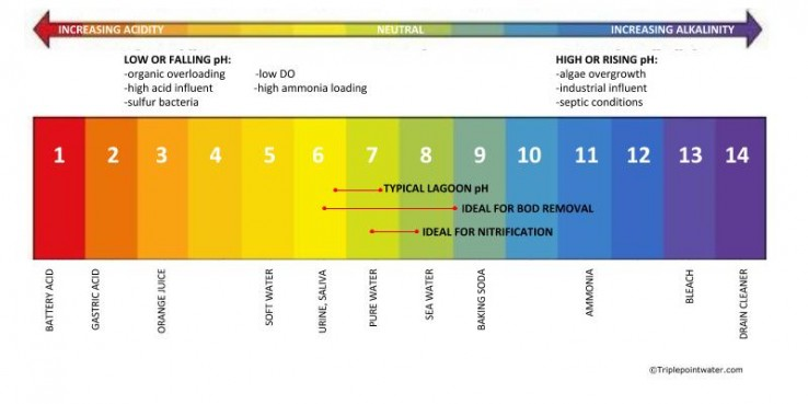 pH chart - Wastewater Lagoon Solutions - TriplepointWastewater - ph chart