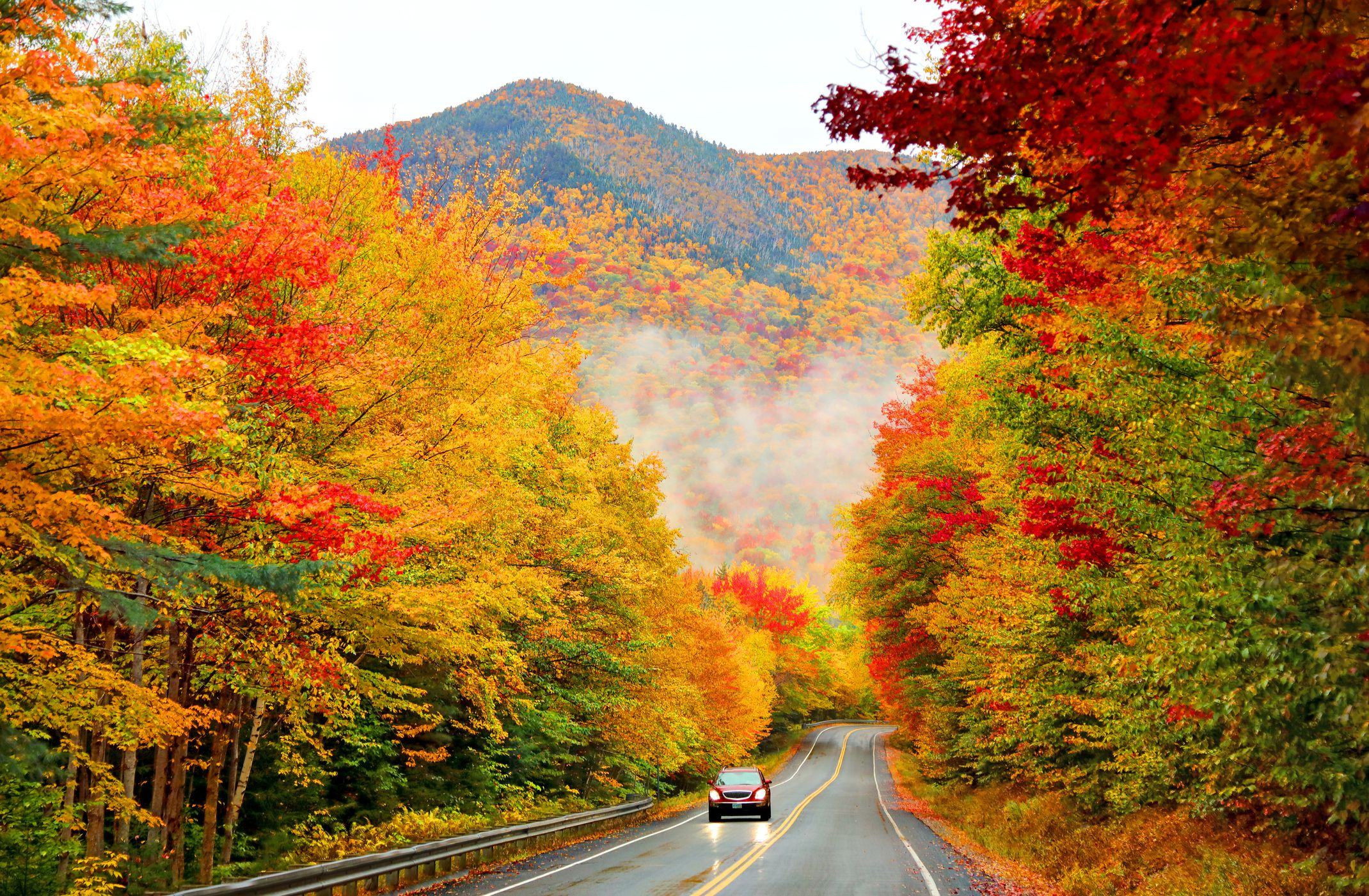 Leaf Wallpaper Wet Fall Kancamagus Highway Best New England Scenic Drive
