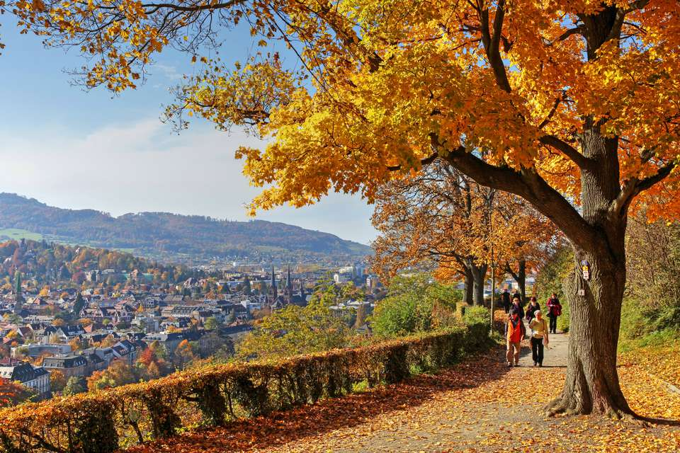 Fall Nature Scenes Wallpaper Top 6 Places To See Autumn Leaves In Germany