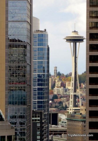 Smith Tower Observation Deck, Trip Wellness, What to do in Seattle