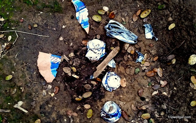 Don't litter when looking for wild, edible mushrooms