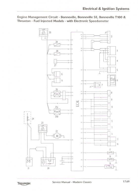 thruxton r wiring diagram
