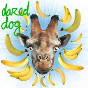 dazed dog 300x300 Dazed Dog ft. Mystic Dan   Moombahwine