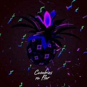 2100536989 1 300x300 Cumbias En Flor   Cassette Birthday Compilation II