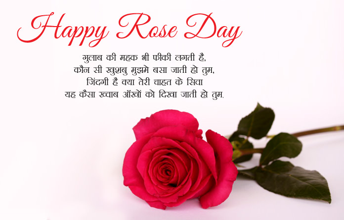 Funny Good Night Quotes Wallpaper 7th Feb Happy Rose Day Images In Hindi English Gulab