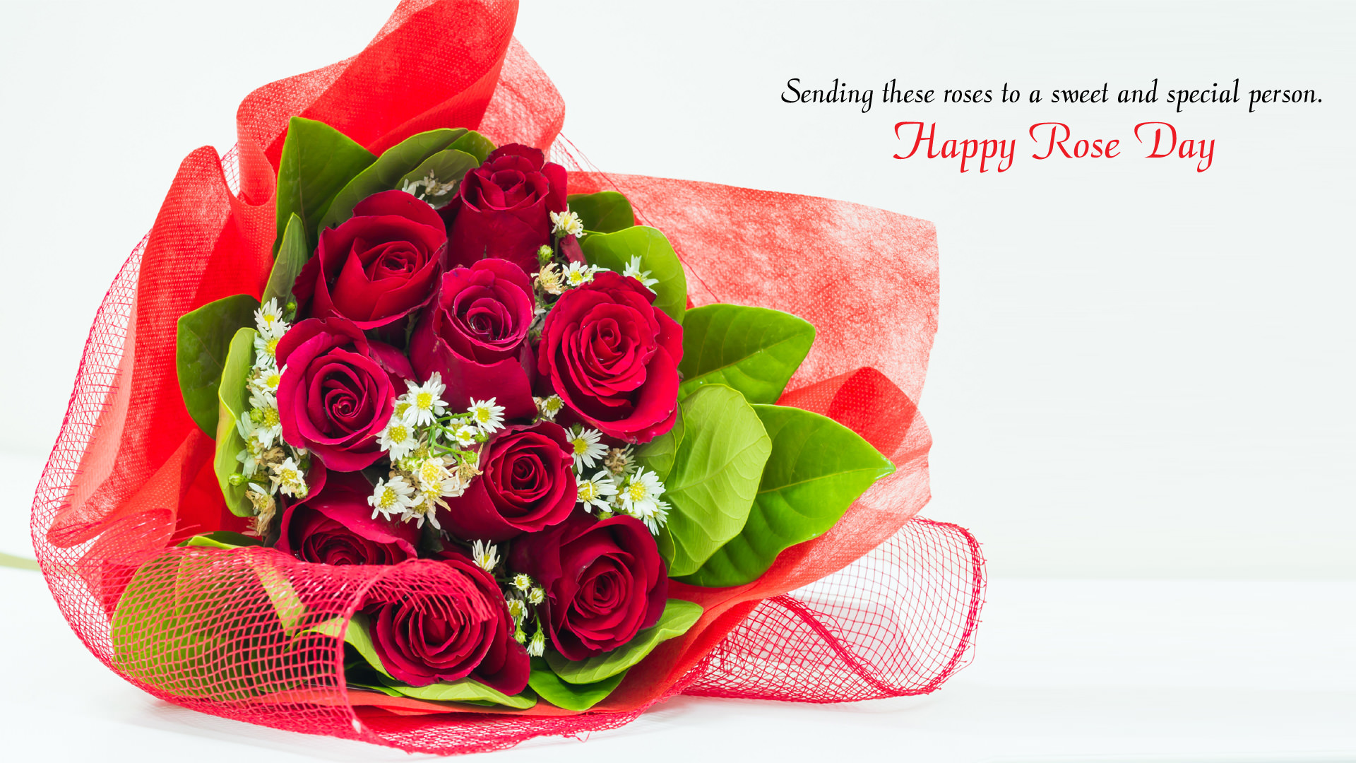 Flowers Wallpapers For Desktop Full Size Hd 7th Feb Rose Day Wallpaper Hd All Color Of Roses For