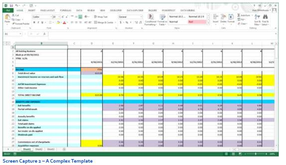 Creating Budgeting Input Templates True Sky