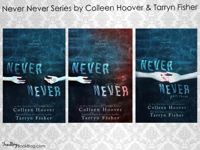 Never Never Series RC ts