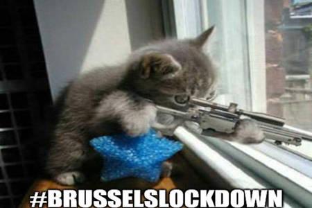 Brussels Lockdown - Internet Fun