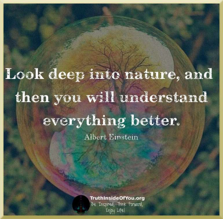 Look deep into nature, and then you will understand everything better. ~ Albert Einstein