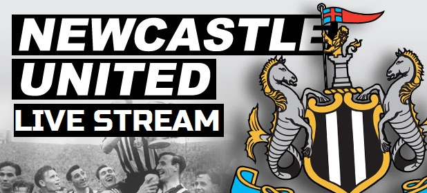 Newcastle United 2013-2014 live streams