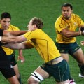Australia vs New Zealand Live Stream