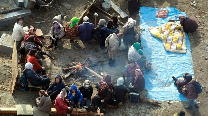 Tsunami Survivors