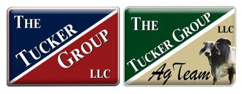 2017_logos