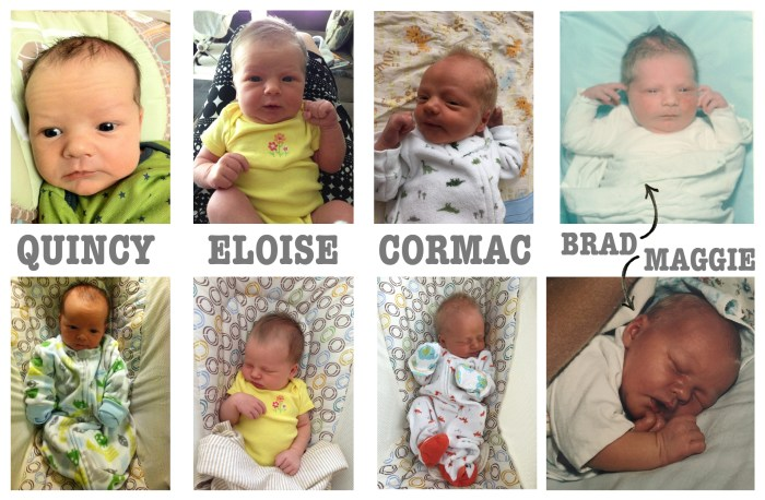 HGMunchkinComparisons-Baby