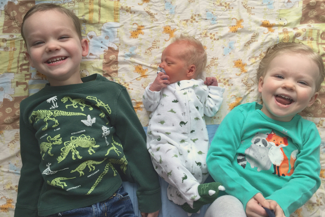 The Three H-G Munchkins