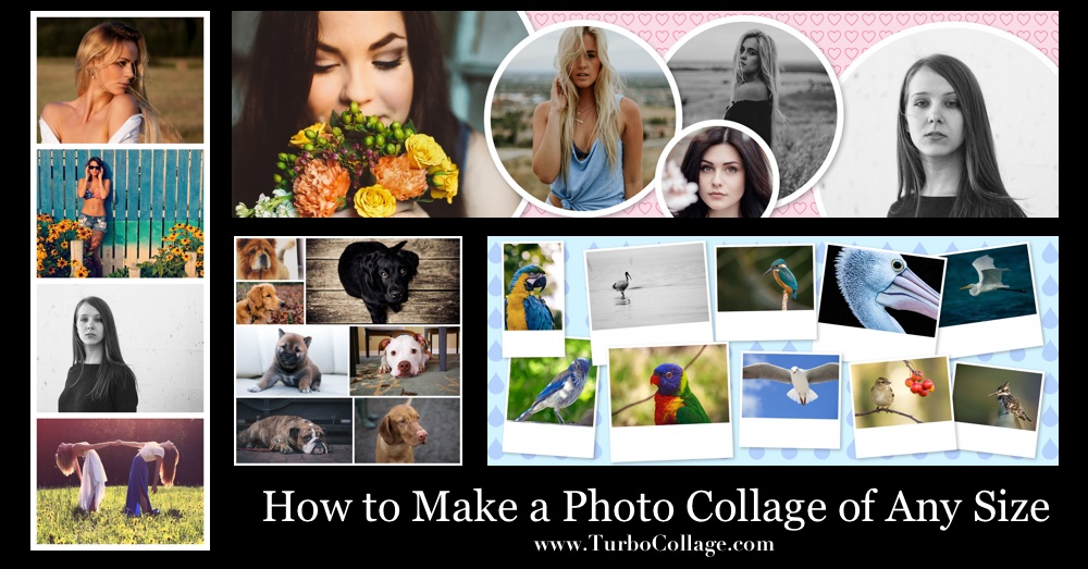 How to Make a Photo Collage of Any Size TurboCollage