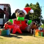 Natal no Caminho das Estrelas - Foto: Thais Cristina Formentini