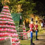 Natal no Caminho das Estrelas 2020 | Foto: Samuel Sattler