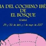 Feria del Cochino Ibérico El Bosque