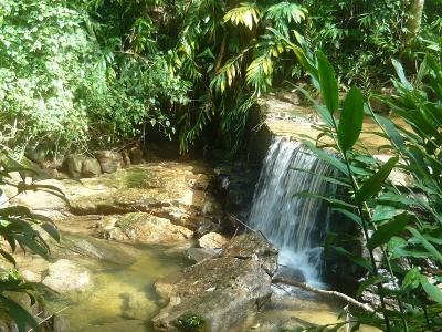 Parque Nacional de Tijuca