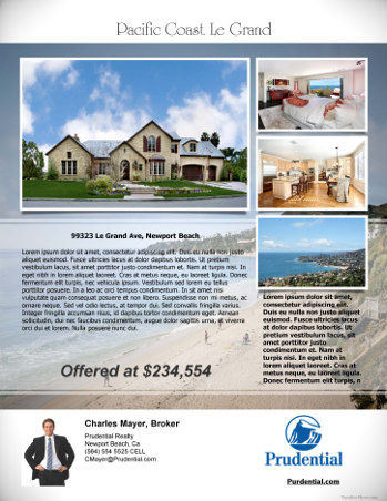 Free Real Estate Flyer Templates. Data Entry Resumes