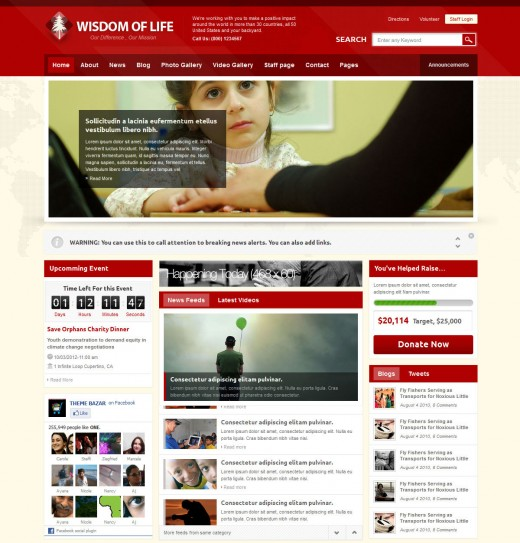 Exclusive Free and Premium Charity Templates - TutorialChip - php templates