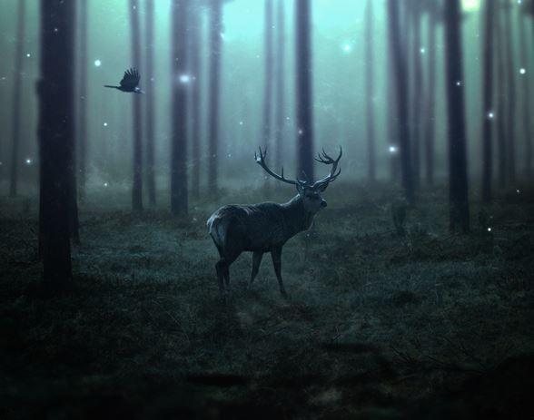 Girl Mask Wallpaper Create A Dark Emotional Deer Photo Manipulation In