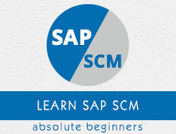 sap ewm consultant resume sample letter requesting job evaluation