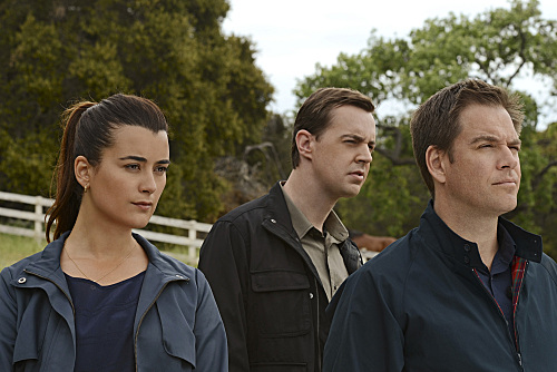NCIS (CBS) Till Death Do Us Part