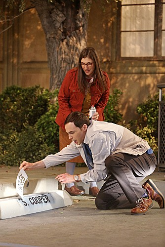 The Big Bang Theory Season 6 Episode 9 (11)