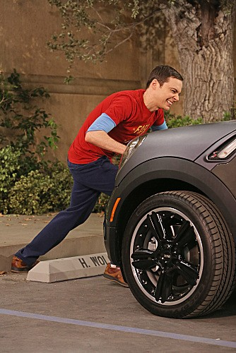 The Big Bang Theory Season 6 Episode 9 (9)