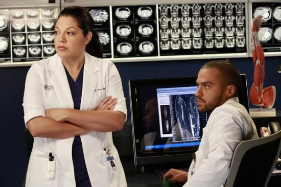 Grey's Anatomy Season 9 Episode 9 Run Baby Run (7)