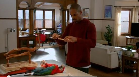 "Happy Endings Season 3 Episode 8 ""Fowl Play/Date"""