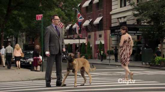 Finch and Bear - Person of Interest