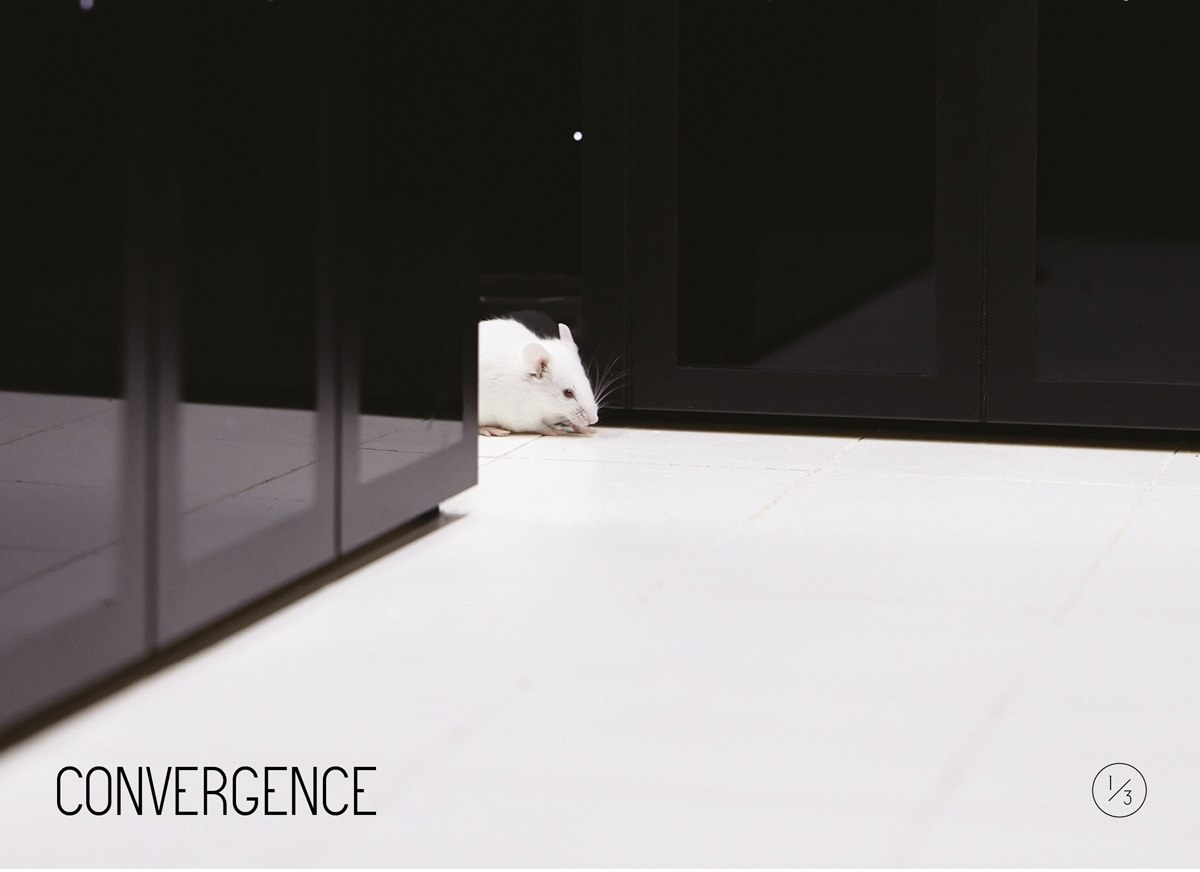 Resonance_1_3_Web2