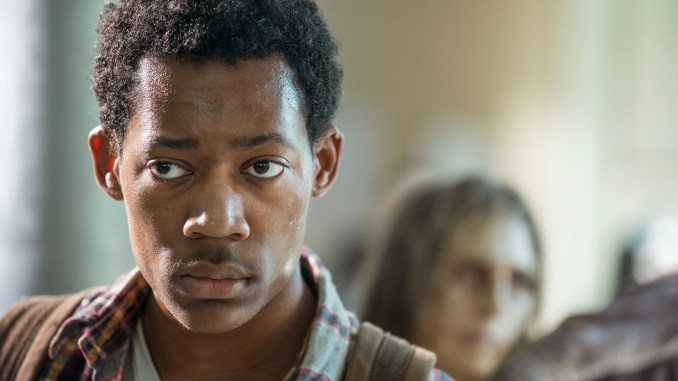 Tyler James Williams as Noah - The Walking Dead _ Season 5, Episode 14 - Photo Credit: Gene Page/AMC