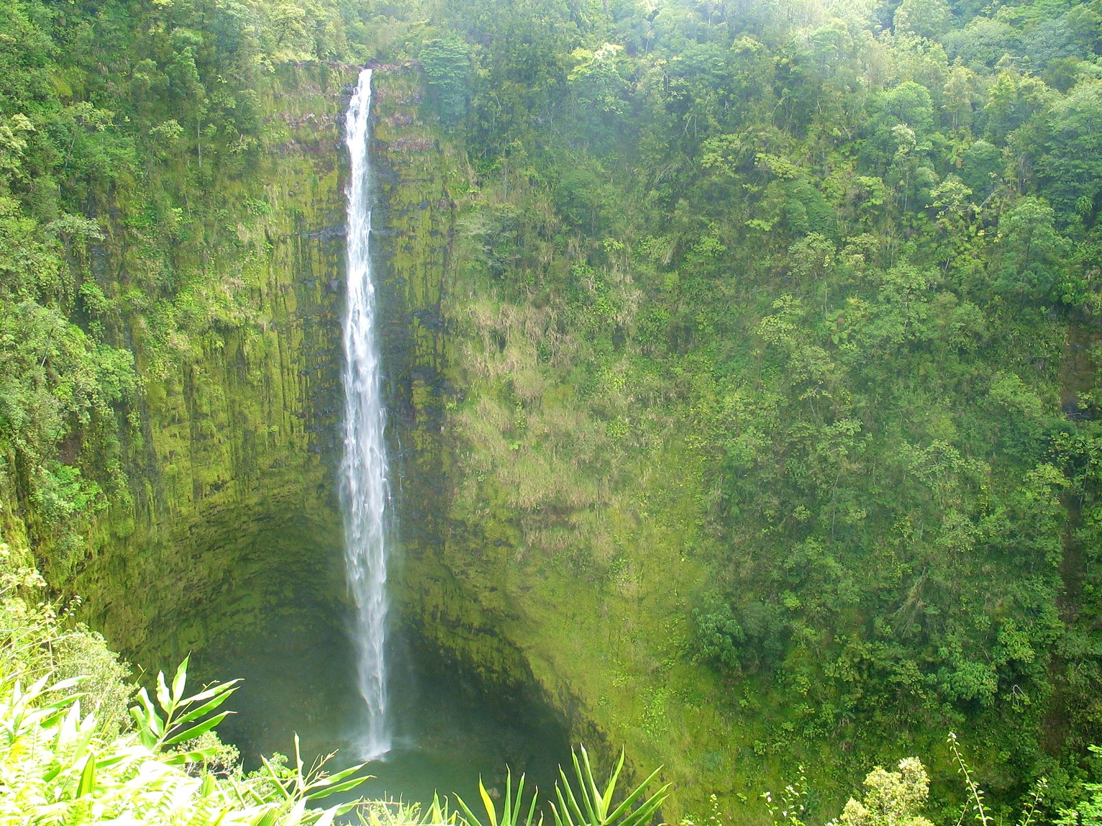 Akaka Falls Wallpaper Wallpapers Waterfalls