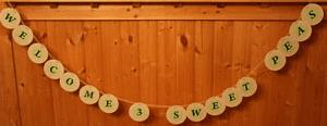 sweet peas triplet baby shower