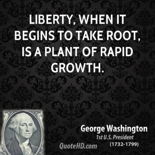 george-washington-president-quote-liberty-when-it-begins-to-take-root-is-a-plant