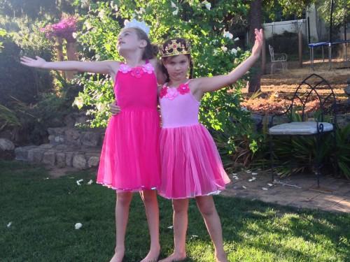 3 - Fairy Princesses