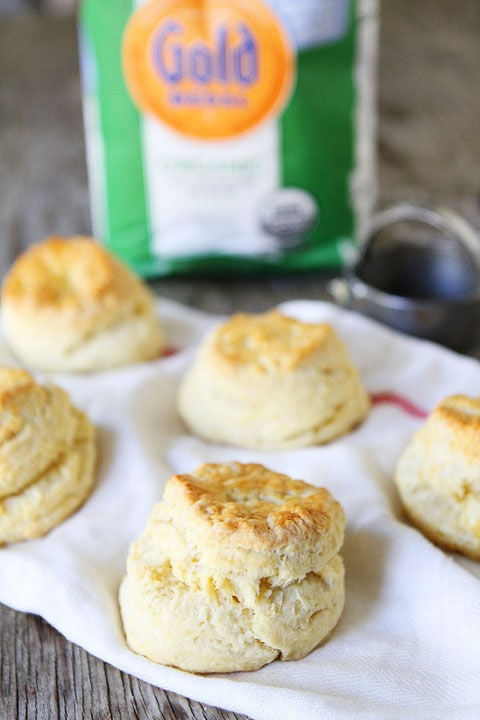 Greek Yogurt Biscuits | Biscuit Recipe | Two Peas & Their Pod